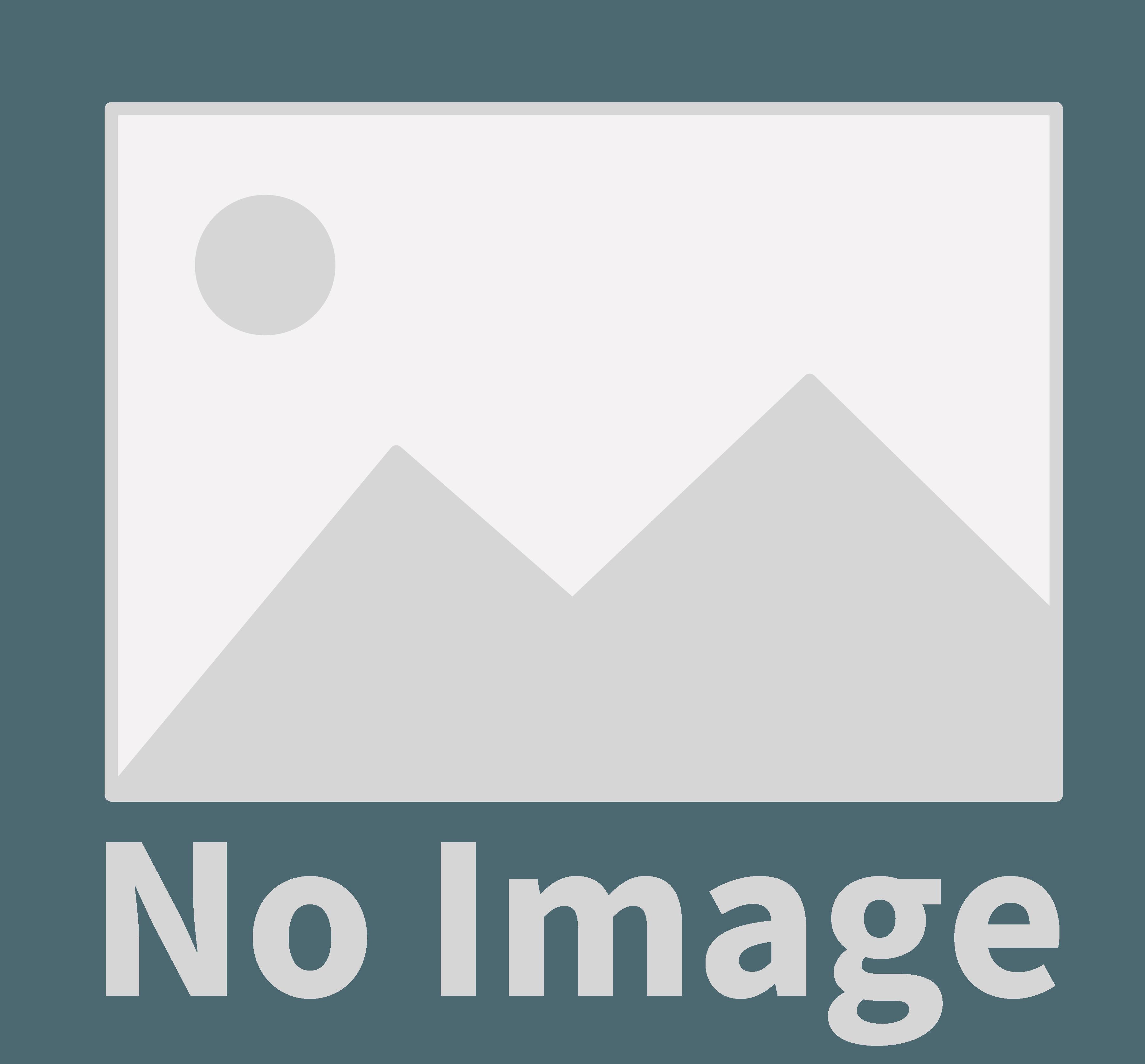 でんきのヤスダ