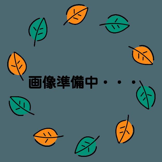 タピオカ専門店 ワンティー(一茶)